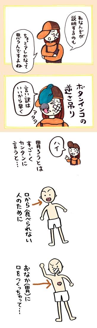 noboru16-3.jpg